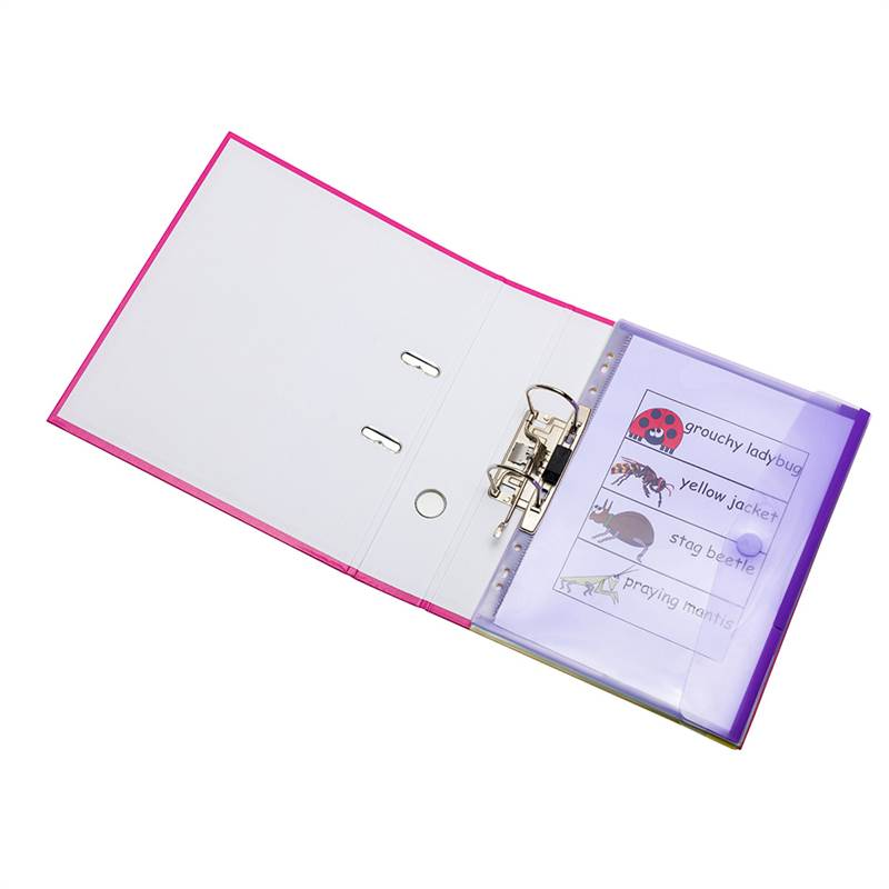 A4 perforated folders, 12 folders in assorted colors